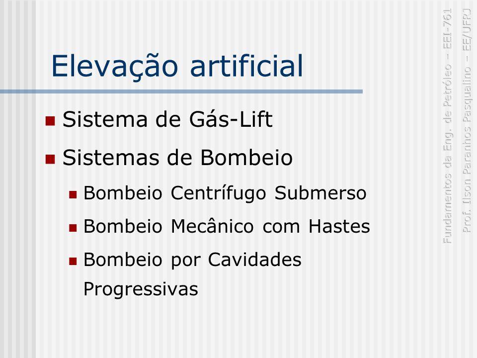 Elevação artificial Sistema de Gás-Lift Sistemas de Bombeio