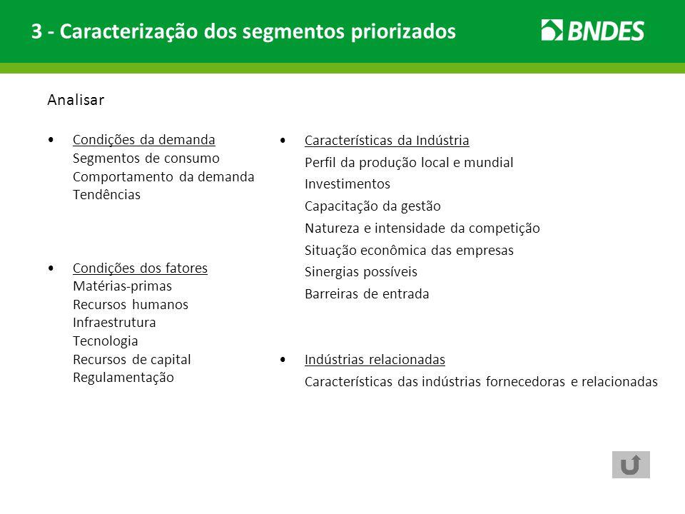 3 - Caracterização dos segmentos priorizados