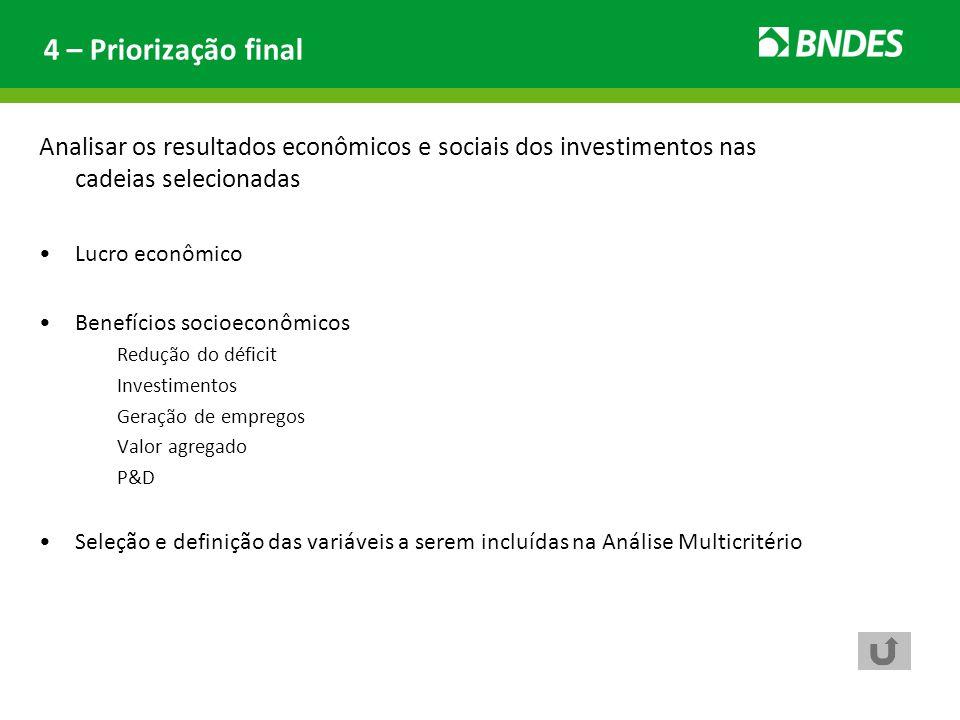 4 – Priorização final Analisar os resultados econômicos e sociais dos investimentos nas cadeias selecionadas.