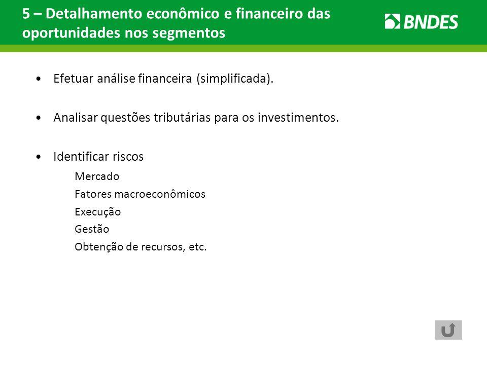 5 – Detalhamento econômico e financeiro das oportunidades nos segmentos