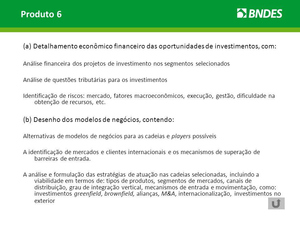 Produto 6 (a) Detalhamento econômico financeiro das oportunidades de investimentos, com: