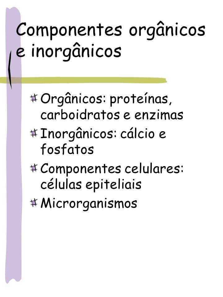 Componentes orgânicos e inorgânicos