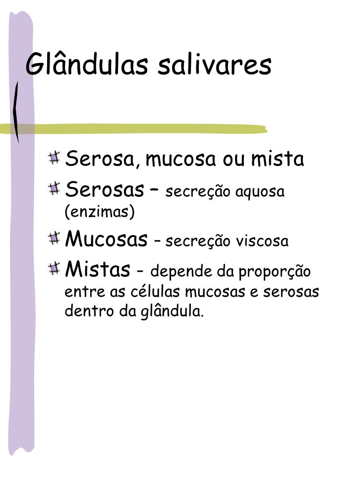 Glândulas salivares Serosa, mucosa ou mista