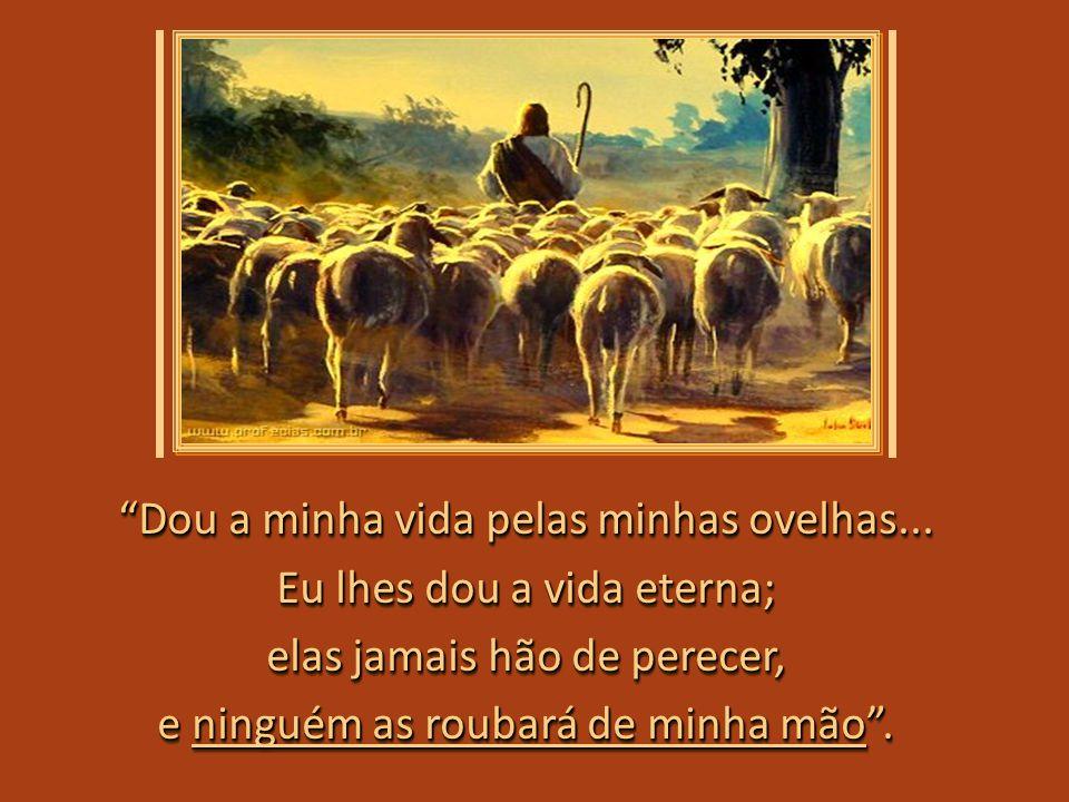 Dou a minha vida pelas minhas ovelhas... Eu lhes dou a vida eterna;