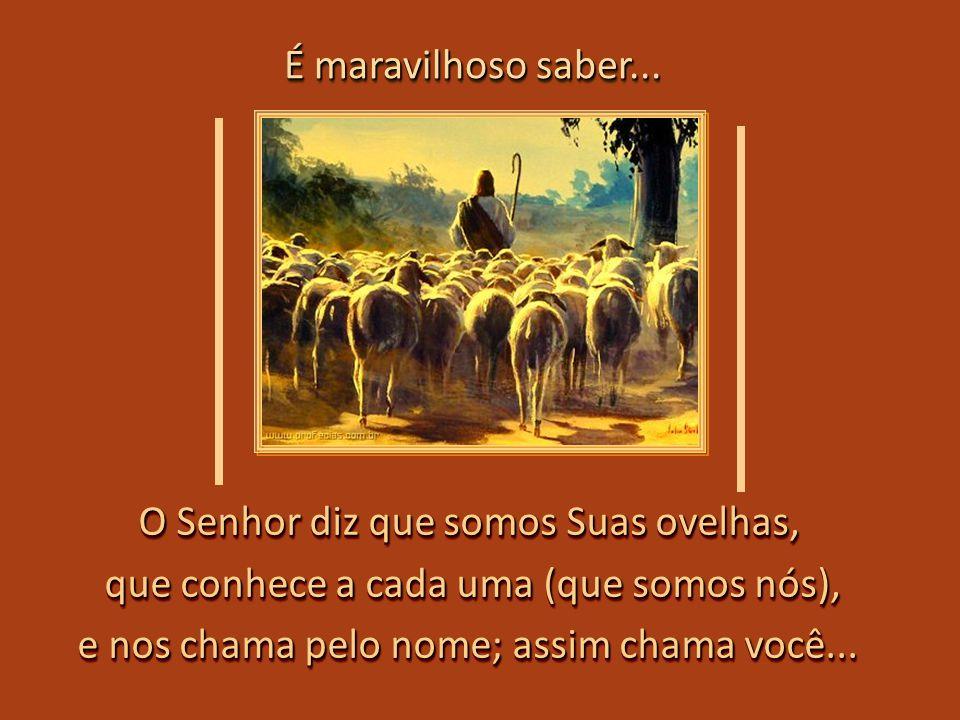 O Senhor diz que somos Suas ovelhas,