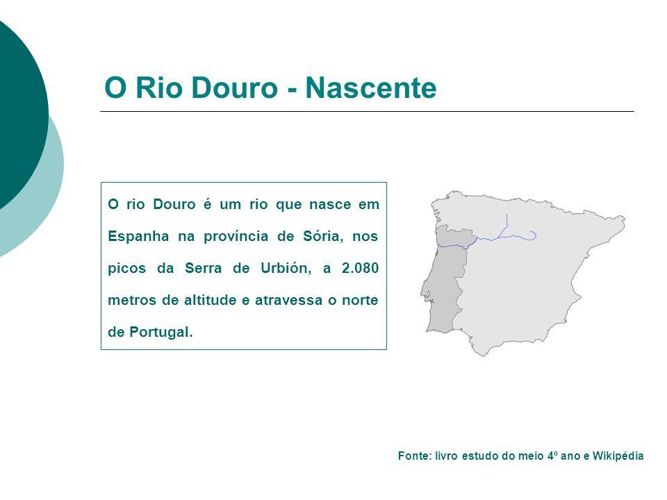 O Rio Douro - Nascente