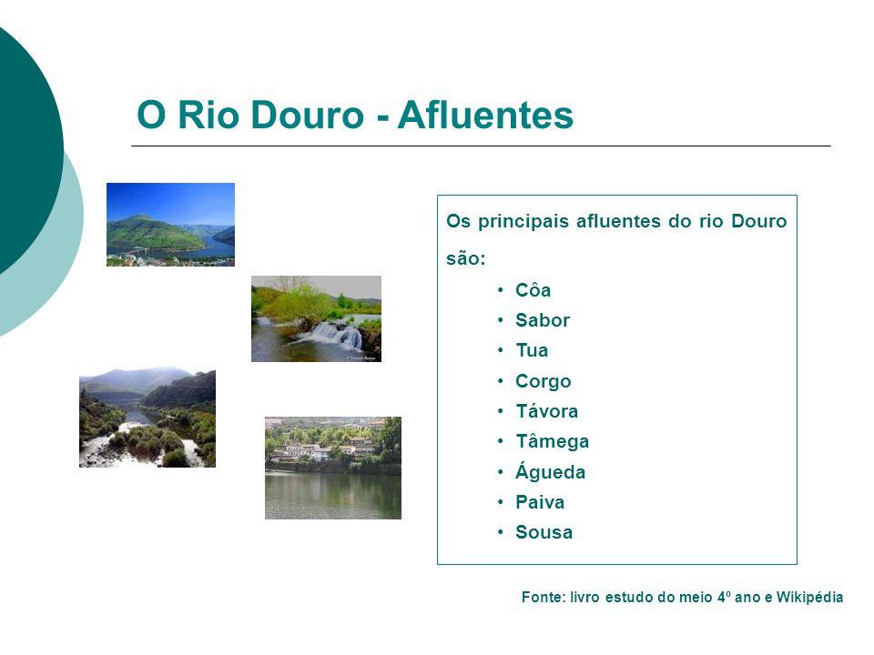 O Rio Douro - Afluentes Os principais afluentes do rio Douro são: Côa