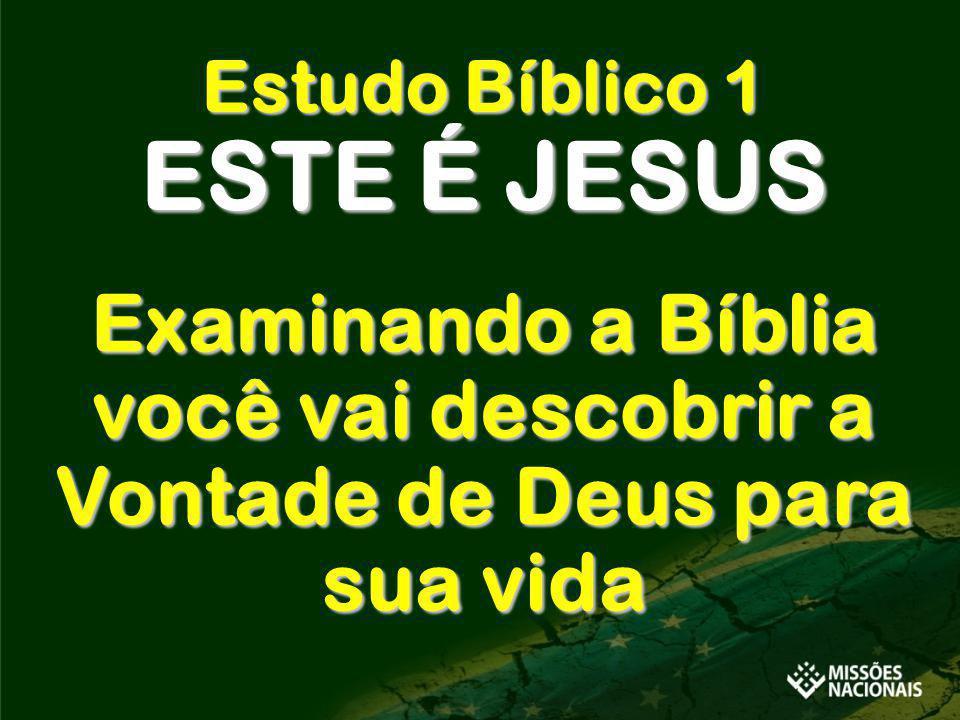Examinando a Bíblia você vai descobrir a Vontade de Deus para sua vida