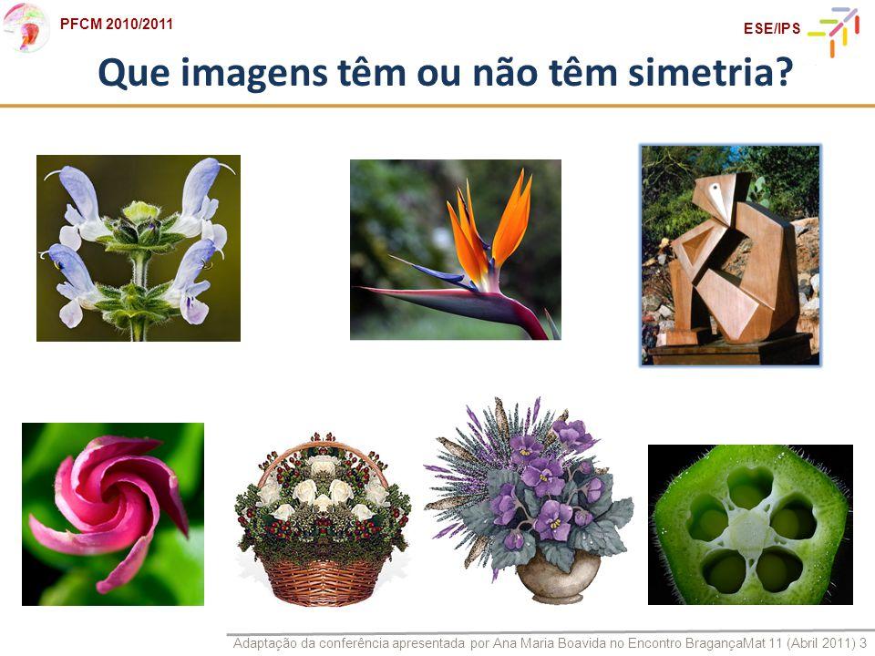 Que imagens têm ou não têm simetria
