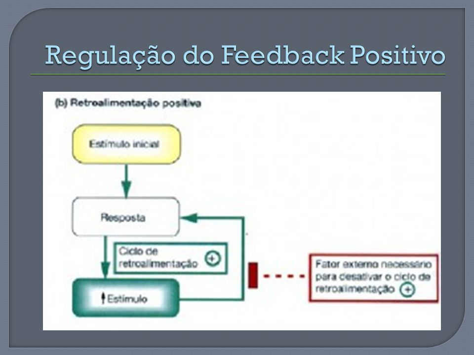Regulação do Feedback Positivo