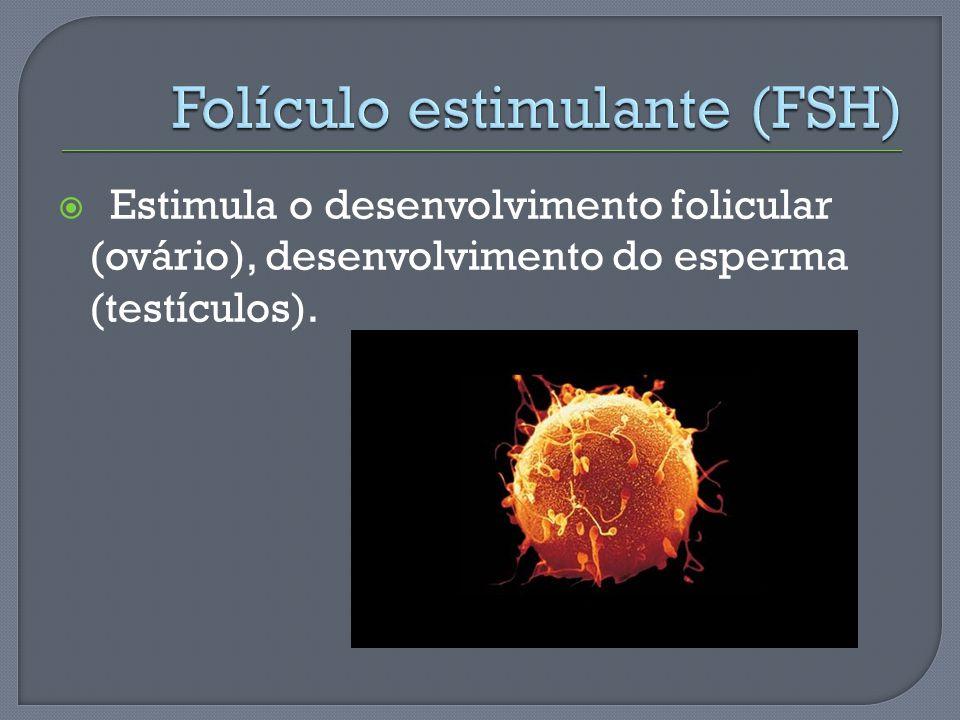 Folículo estimulante (FSH)