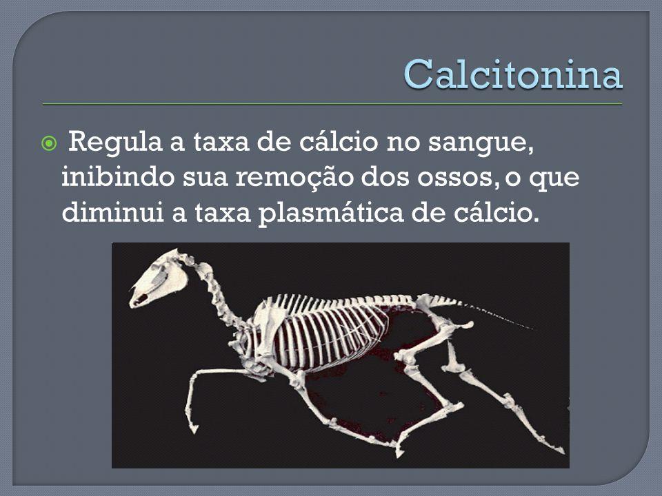 Calcitonina Regula a taxa de cálcio no sangue, inibindo sua remoção dos ossos, o que diminui a taxa plasmática de cálcio.