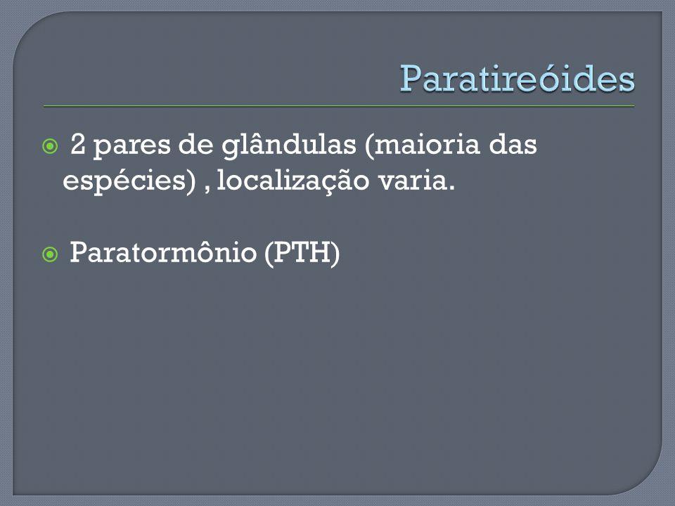 Paratireóides 2 pares de glândulas (maioria das espécies) , localização varia. Paratormônio (PTH)