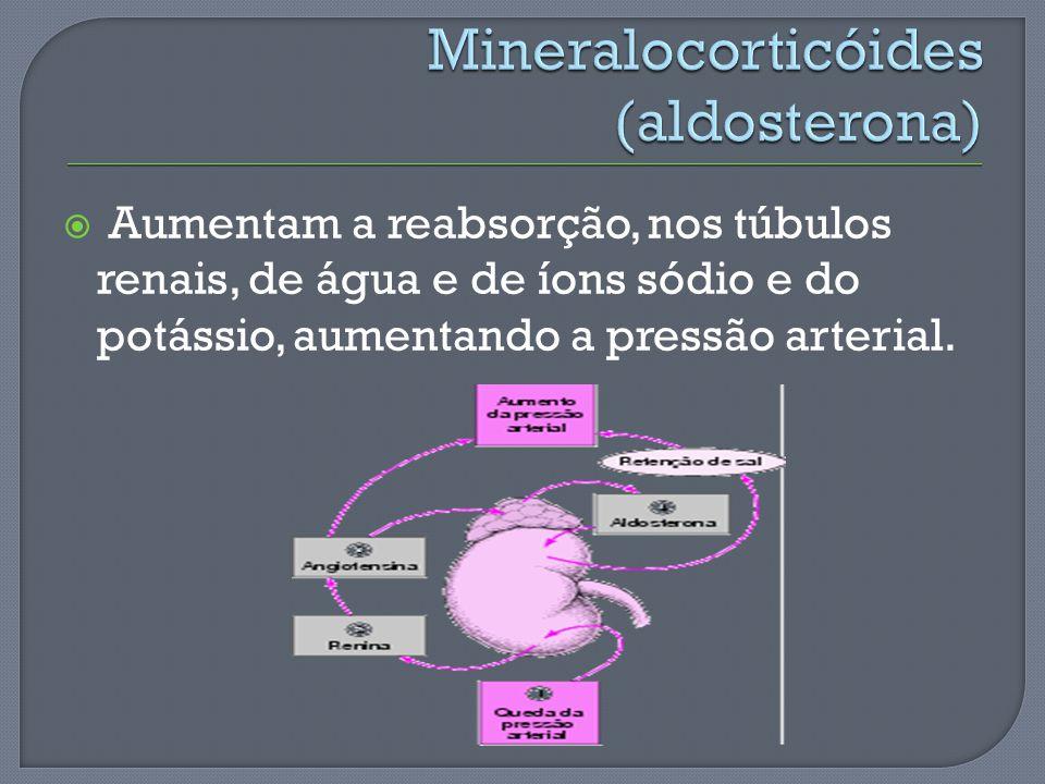 Mineralocorticóides (aldosterona)