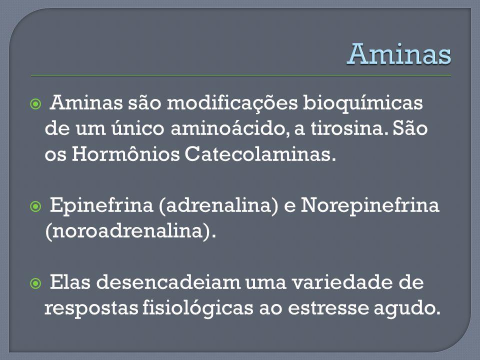 Aminas Aminas são modificações bioquímicas de um único aminoácido, a tirosina. São os Hormônios Catecolaminas.