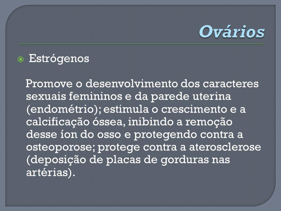 Ovários Estrógenos.