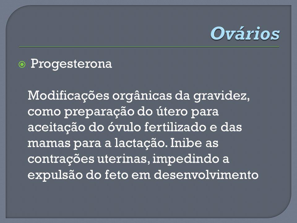 Ovários Progesterona.