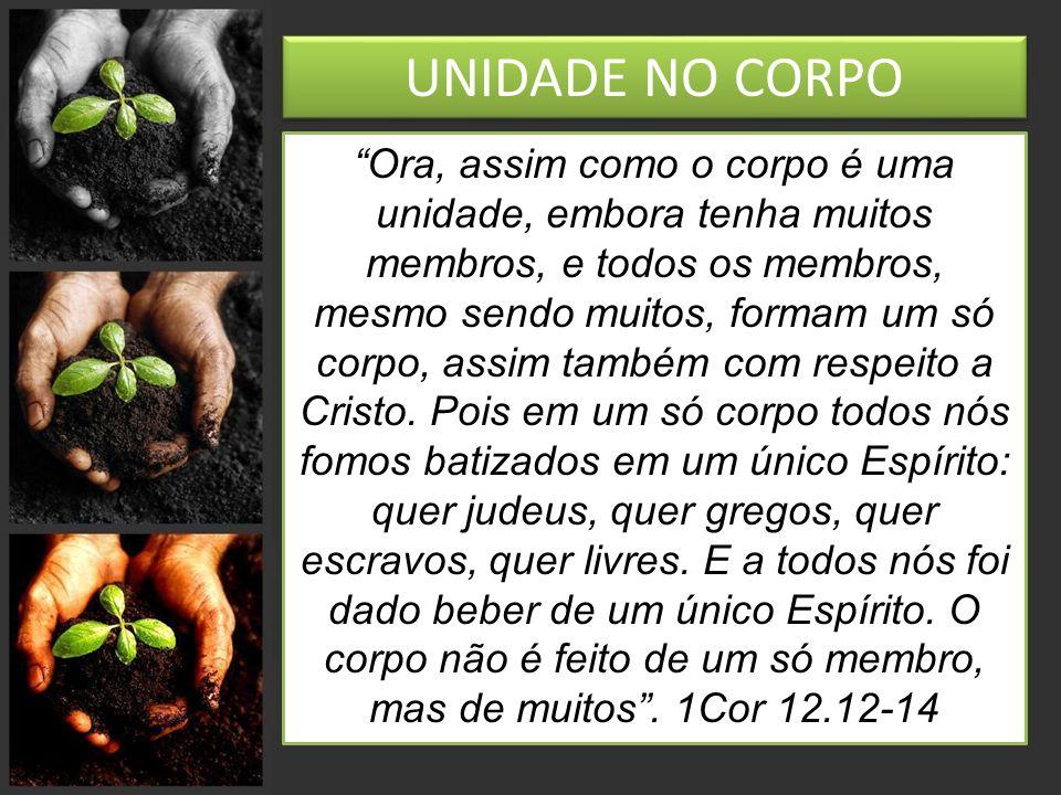 UNIDADE NO CORPO