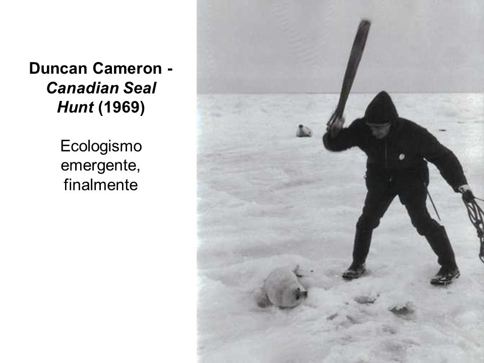 Duncan Cameron - Canadian Seal Hunt (1969)