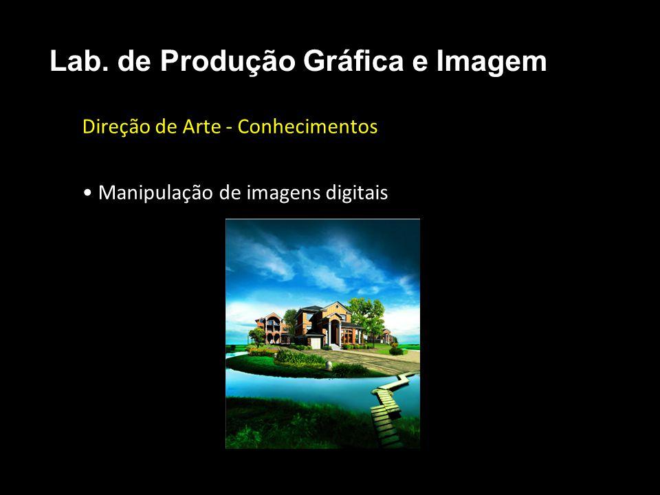 Direção de Arte - Conhecimentos • Manipulação de imagens digitais