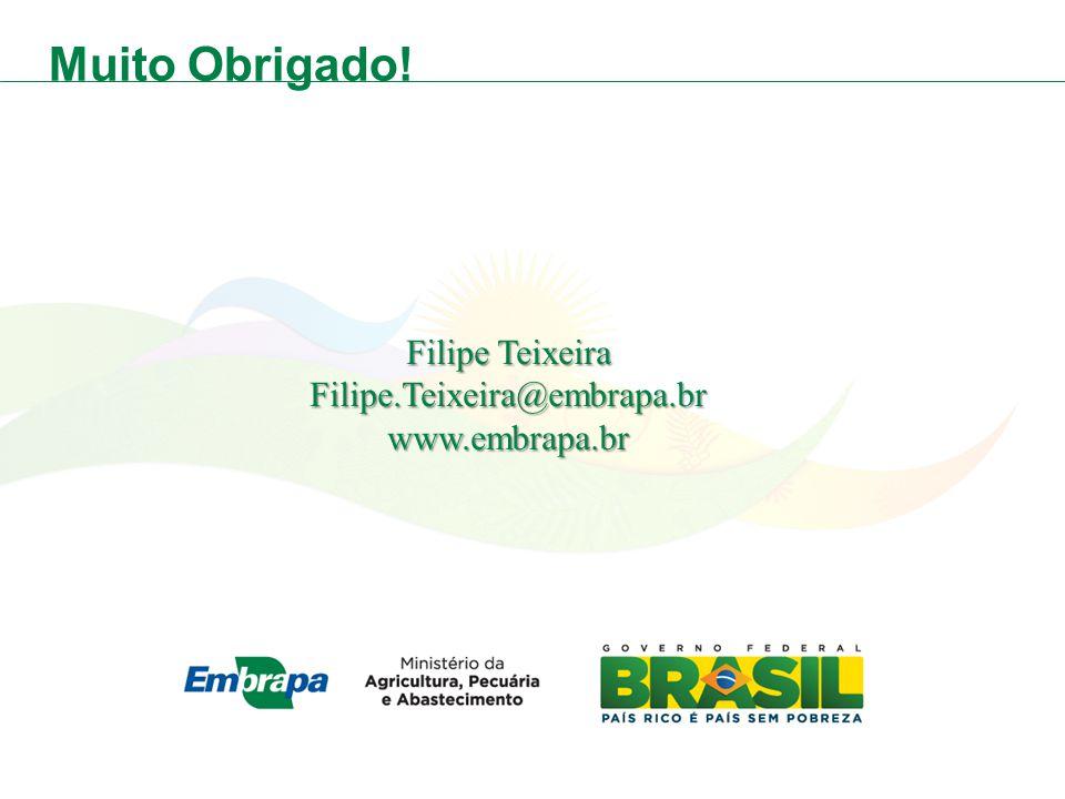 Muito Obrigado! Filipe Teixeira Filipe.Teixeira@embrapa.br