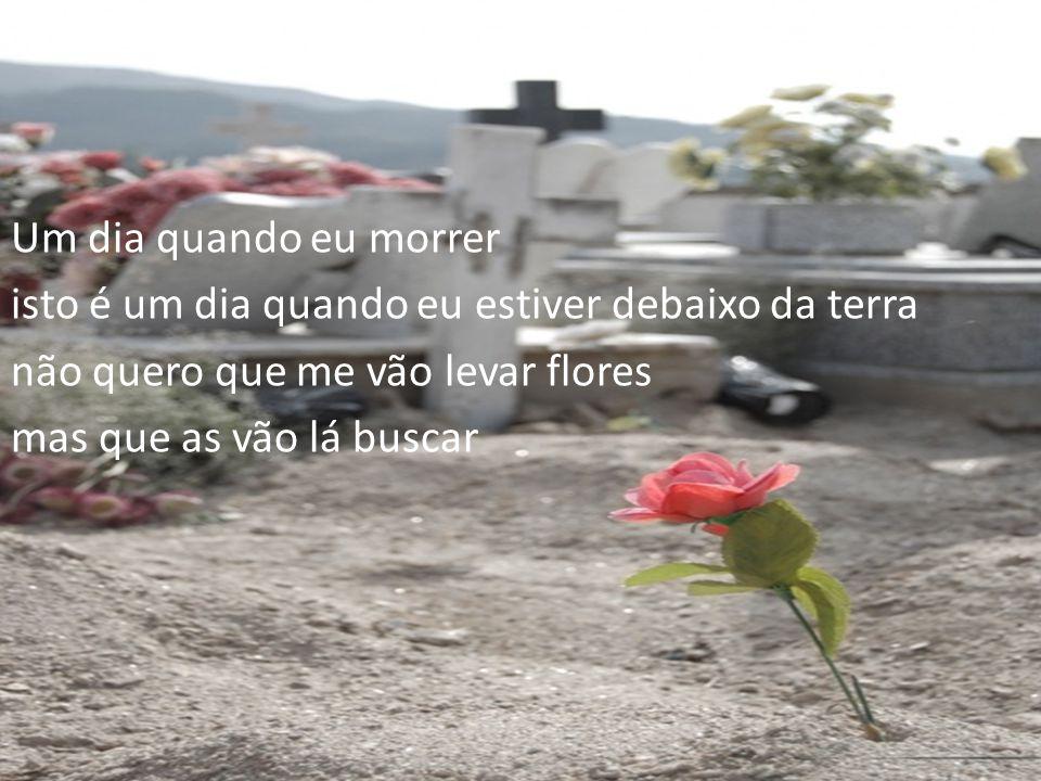 Um dia quando eu morrer isto é um dia quando eu estiver debaixo da terra. não quero que me vão levar flores.