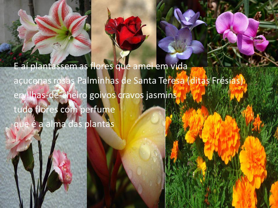 E aí plantassem as flores que amei em vida