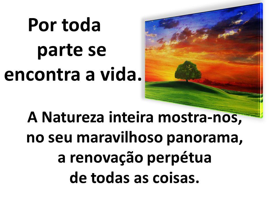 A Natureza inteira mostra-nos, no seu maravilhoso panorama,