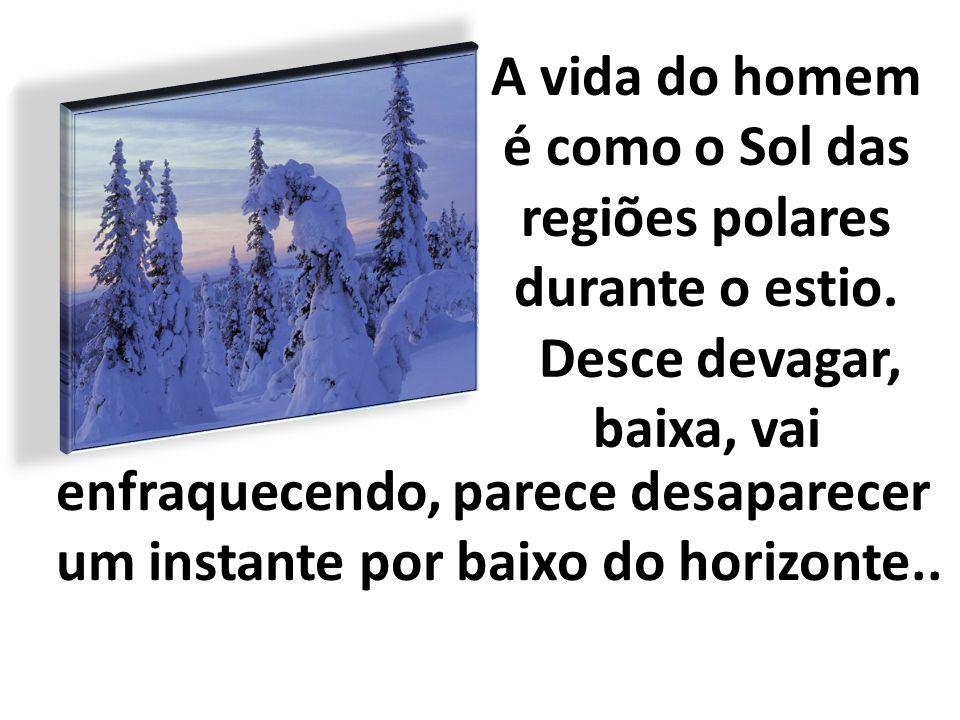 regiões polares durante o estio.
