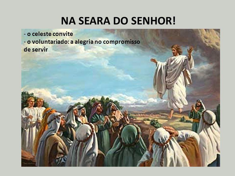NA SEARA DO SENHOR! o celeste convite