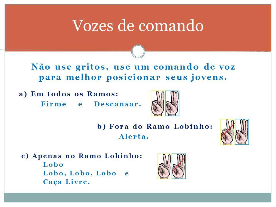 Vozes de comando Não use gritos, use um comando de voz para melhor posicionar seus jovens. a) Em todos os Ramos: