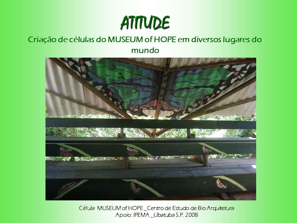 ATITUDE Criação de células do MUSEUM of HOPE em diversos lugares do mundo. Célula MUSEUM of HOPE _Centro de Estudo de Bio Arquitetura.