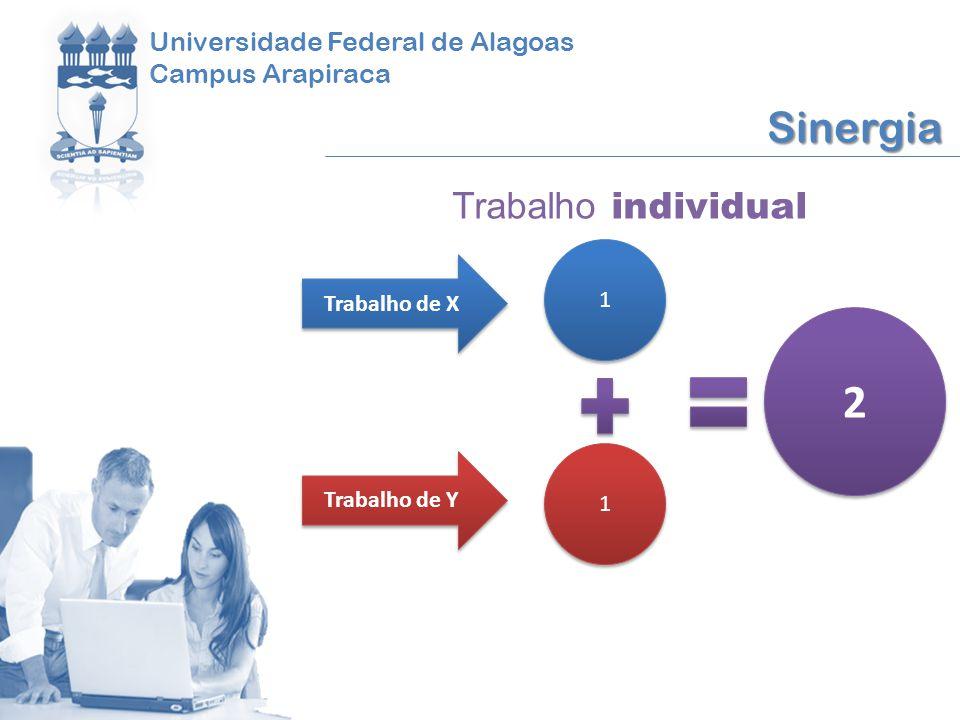 2 Sinergia Trabalho individual Universidade Federal de Alagoas