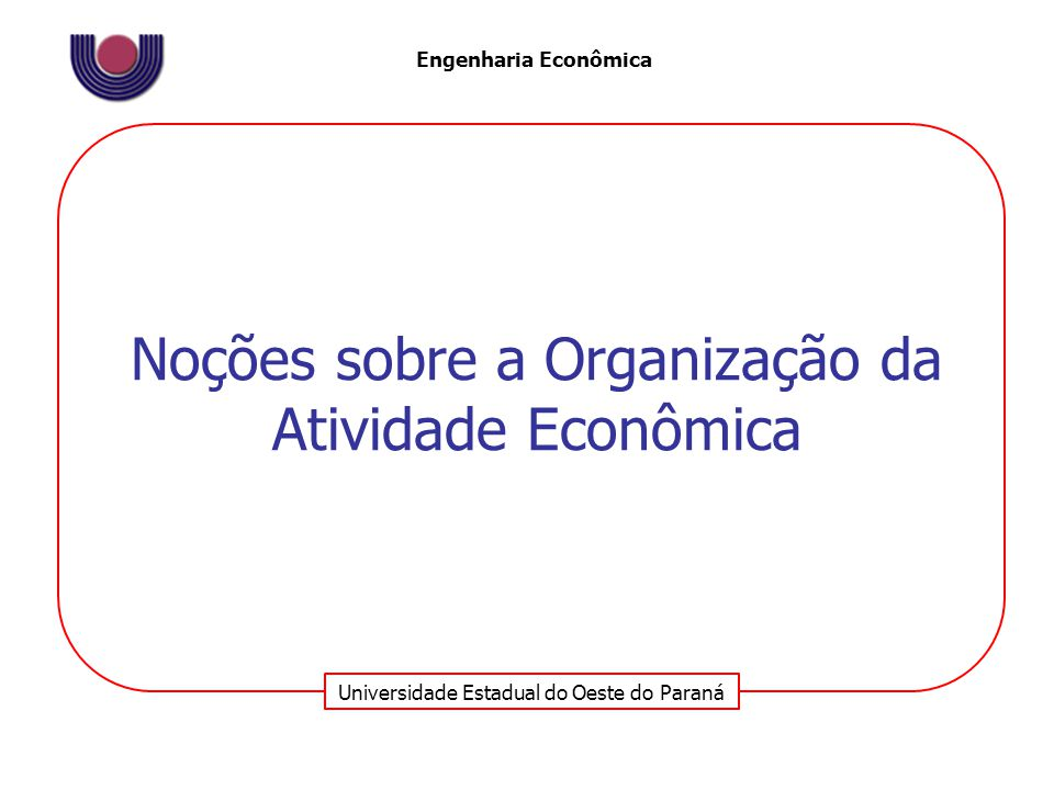 Noções sobre a Organização da Atividade Econômica