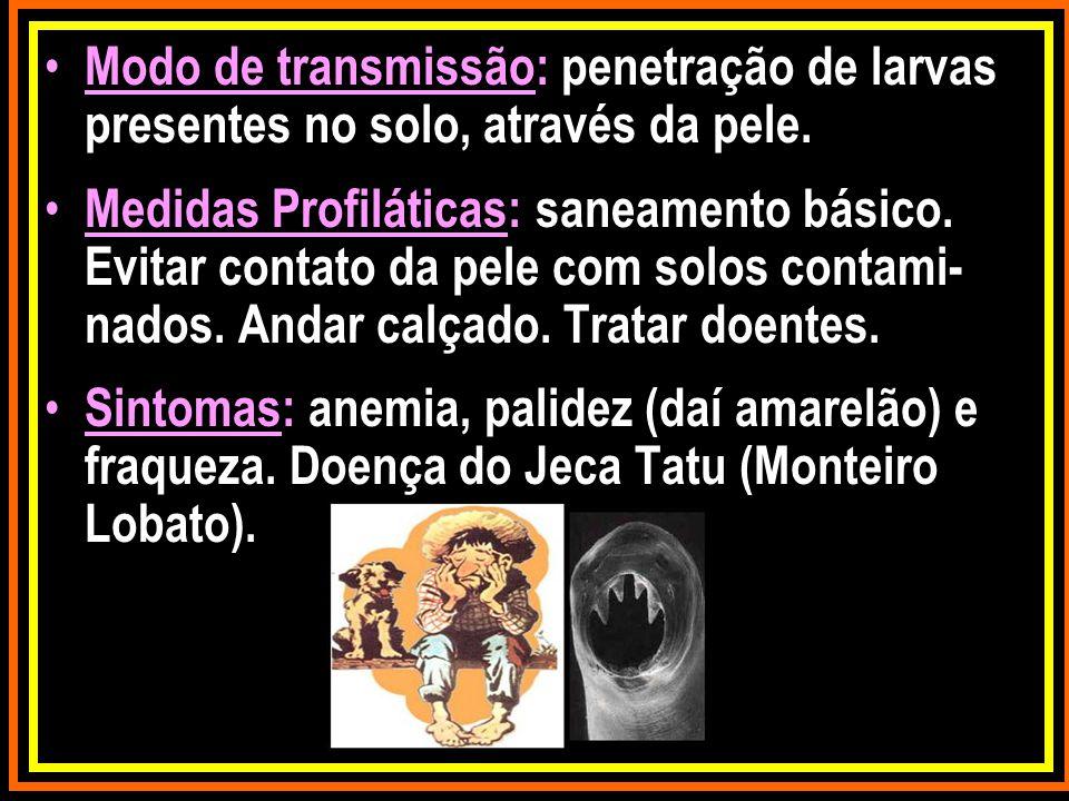Modo de transmissão: penetração de larvas presentes no solo, através da pele.