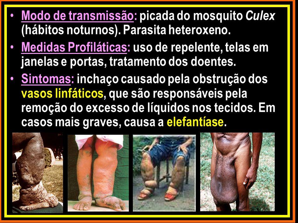 Modo de transmissão: picada do mosquito Culex (hábitos noturnos)