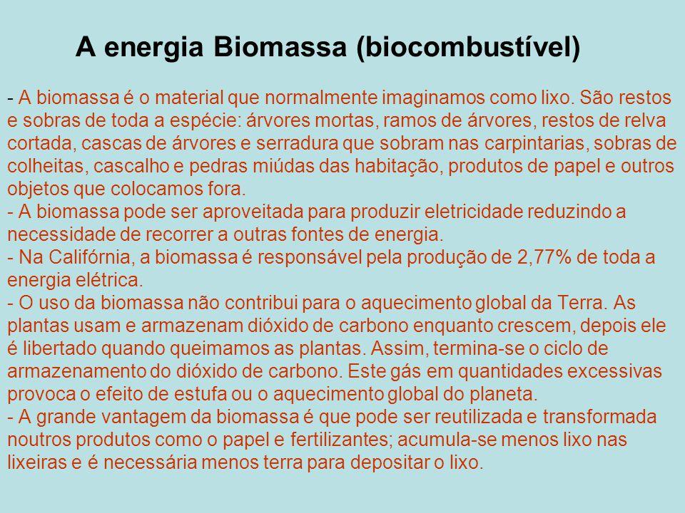 A energia Biomassa (biocombustível) - A biomassa é o material que normalmente imaginamos como lixo.