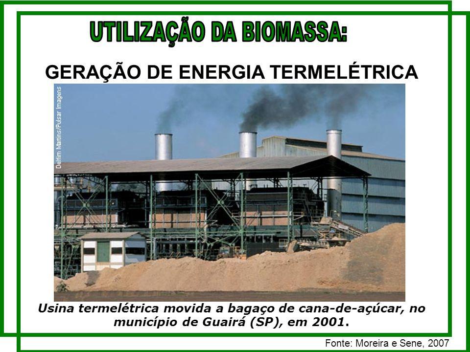 UTILIZAÇÃO DA BIOMASSA: GERAÇÃO DE ENERGIA TERMELÉTRICA