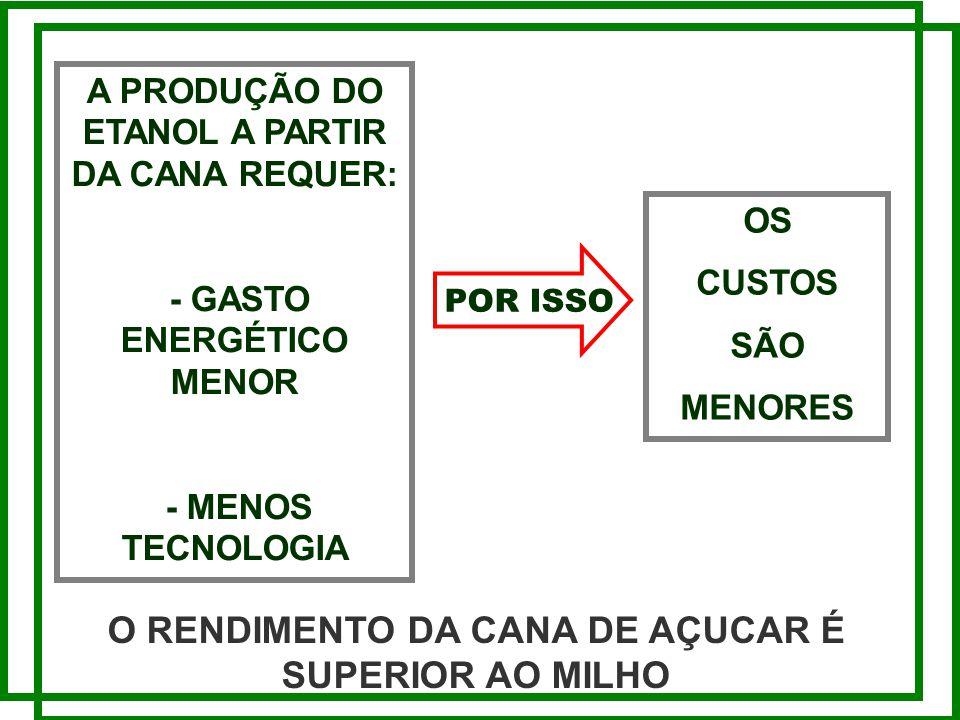 O RENDIMENTO DA CANA DE AÇUCAR É SUPERIOR AO MILHO