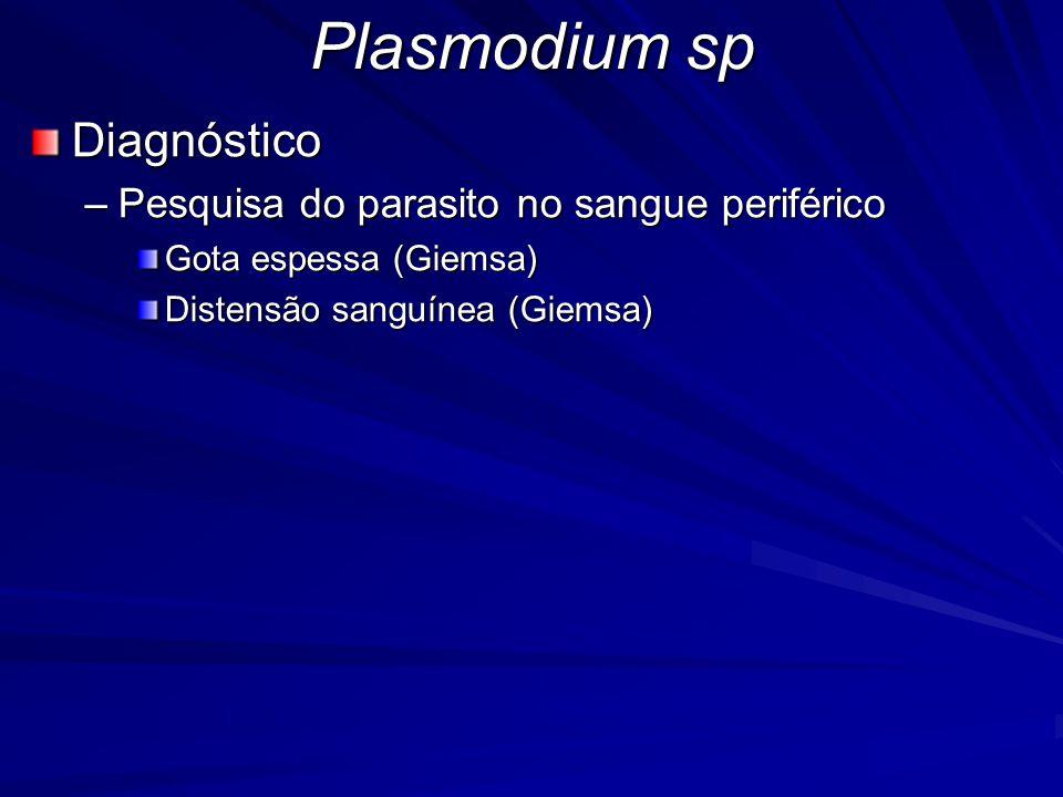 Plasmodium sp Diagnóstico Pesquisa do parasito no sangue periférico