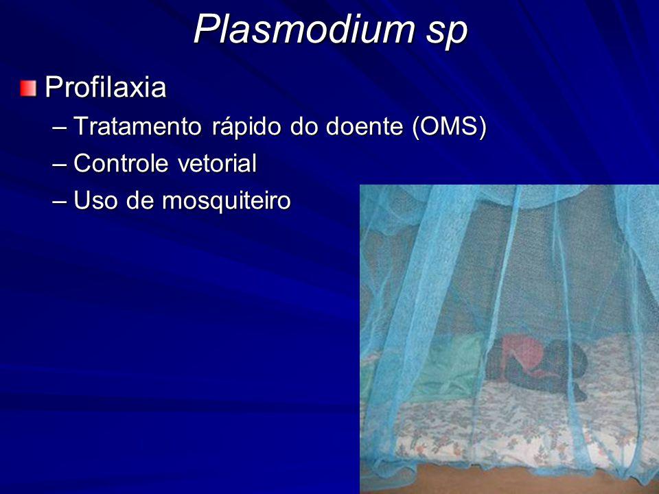 Plasmodium sp Profilaxia Tratamento rápido do doente (OMS)