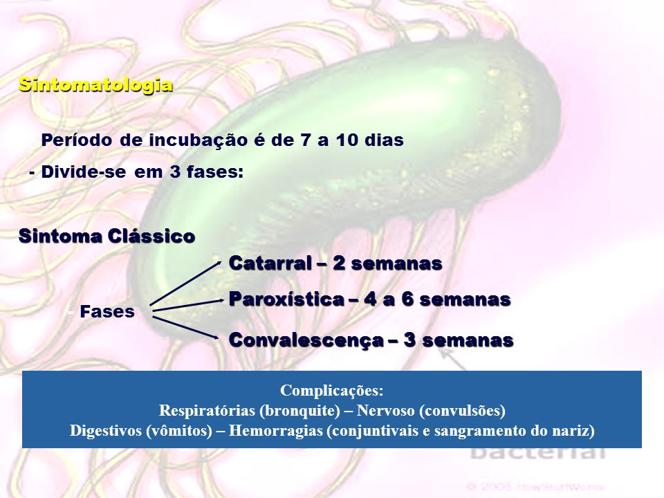 Respiratórias (bronquite) – Nervoso (convulsões)