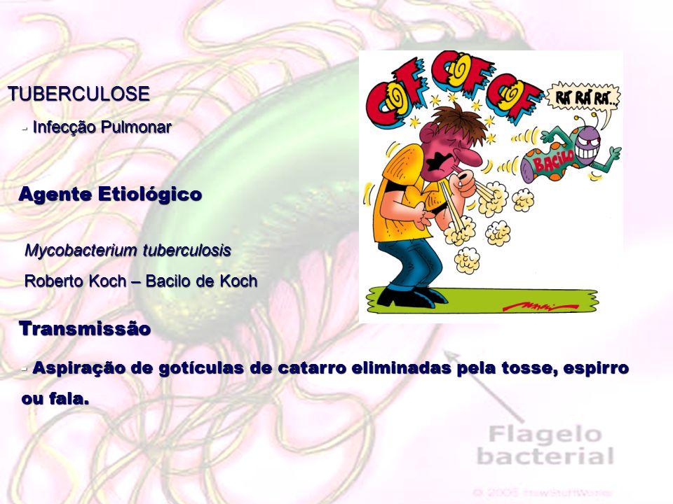 TUBERCULOSE Agente Etiológico Transmissão Infecção Pulmonar
