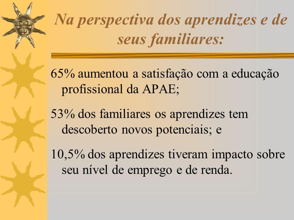 Na perspectiva dos aprendizes e de seus familiares: