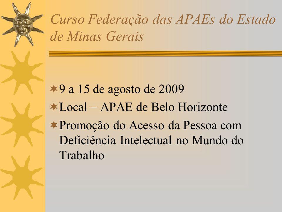 Curso Federação das APAEs do Estado de Minas Gerais