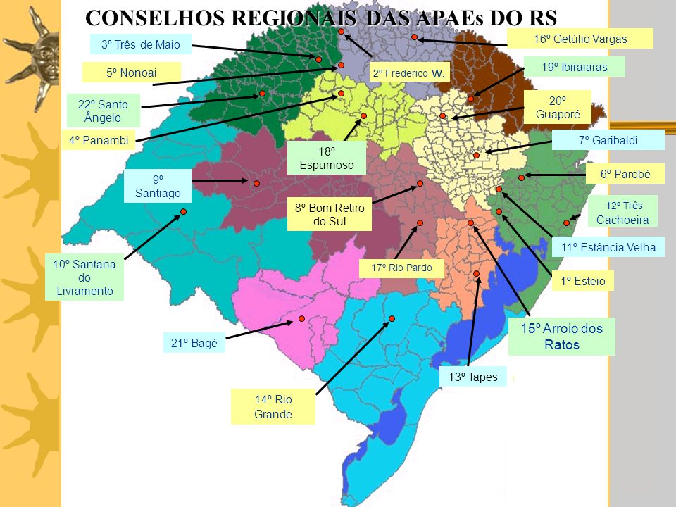 CONSELHOS REGIONAIS DAS APAEs DO RS