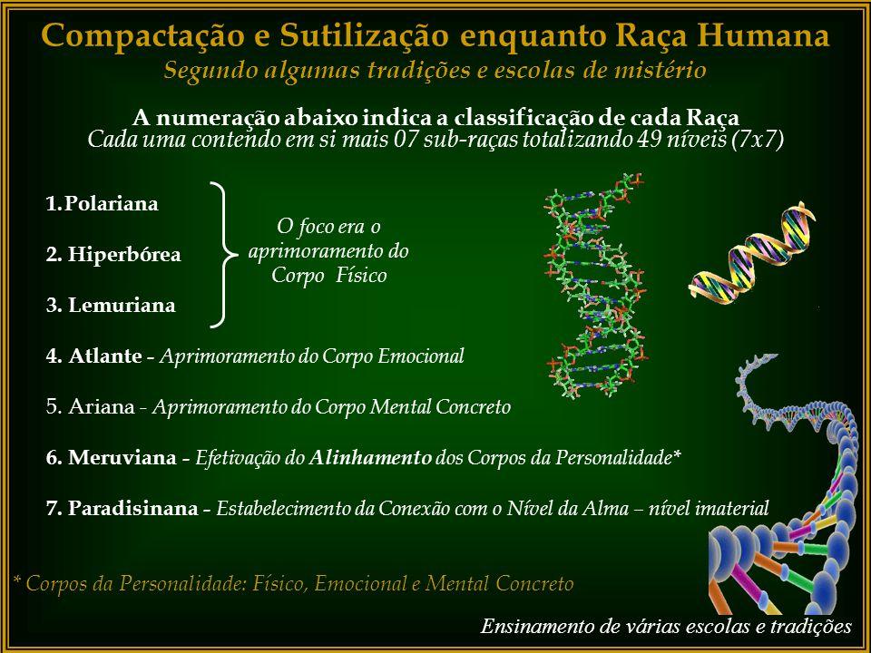 Compactação e Sutilização enquanto Raça Humana