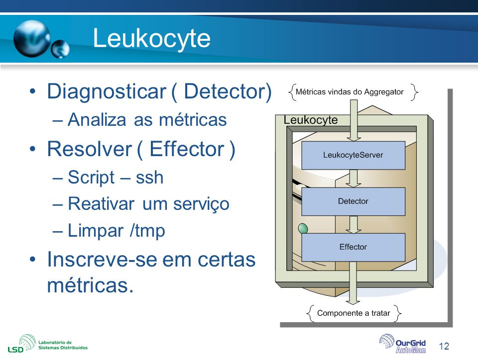 Leukocyte Diagnosticar ( Detector) Resolver ( Effector )