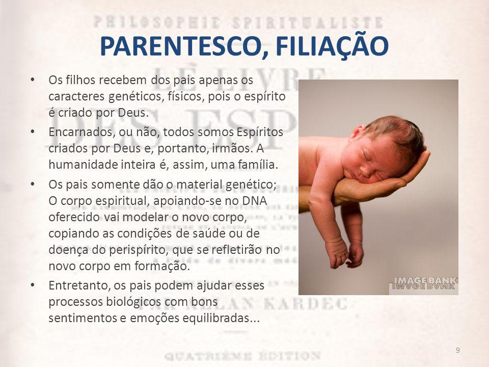 PARENTESCO, FILIAÇÃO Os filhos recebem dos pais apenas os caracteres genéticos, físicos, pois o espírito é criado por Deus.