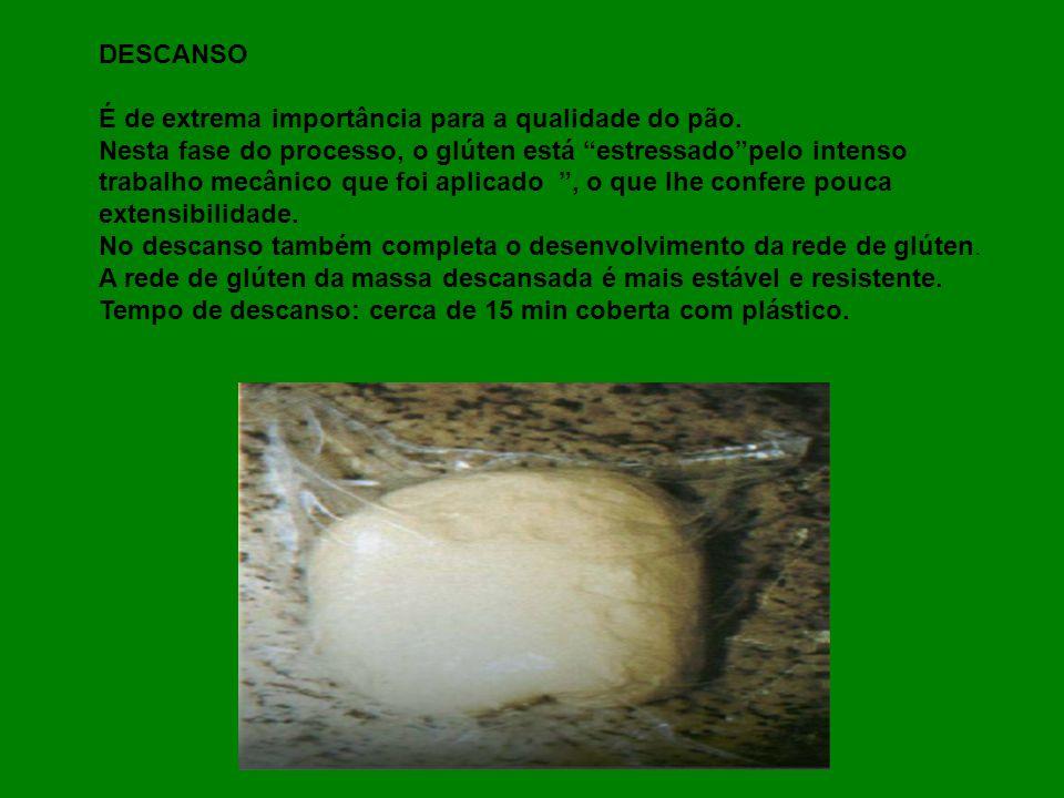 DESCANSO É de extrema importância para a qualidade do pão. Nesta fase do processo, o glúten está estressado pelo intenso.